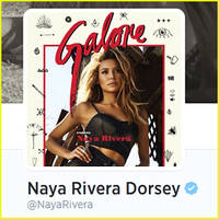 Naya Rivera Unveils New Twitter Name, Naya Rivera Dorsey, After Marrying Ryan Dorsey